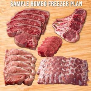 Sample Freezer Plan